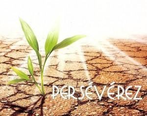 perseverez