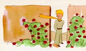 Le Petit Prince1