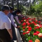 Visite du parc floral de Saint-Mandé